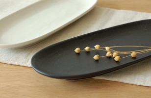 美濃焼 シンプ だ円長皿
