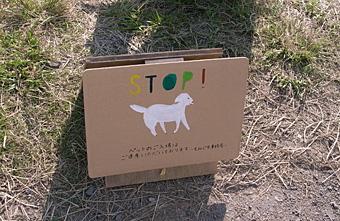 もみじ市 2009